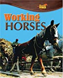 Working Horses, Mary Packard, 1597164038