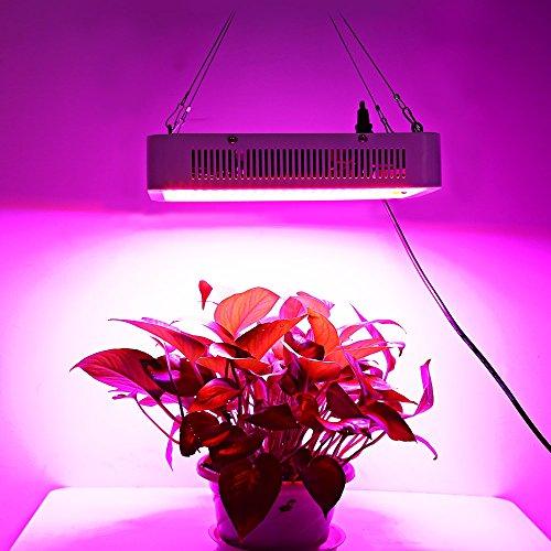 140 Watt Led Grow Light in US - 9