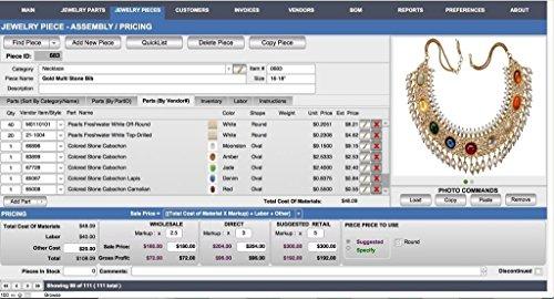 Amazon com: Jewelry Designer Manager Premier