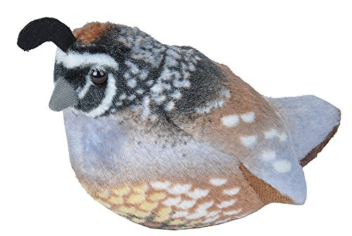 Wild Republic Audubon Birds California Quail Plush with Authentic Bird Sound, Stuffed Animal, Bird Toys for Kids and ()