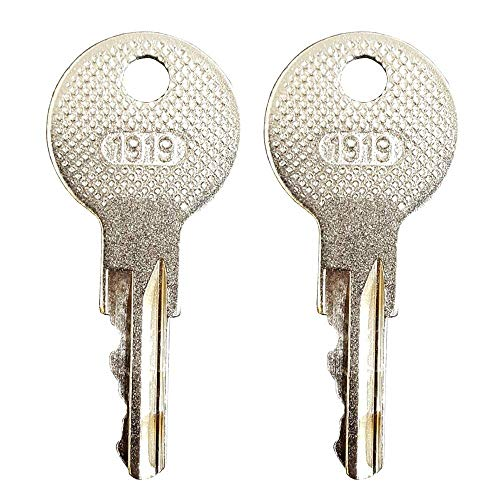Aree Ignition Keys (2PCS) Fits All EZGO Gas and Electric Golf carts 17063-G1