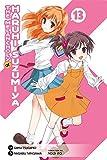 The Melancholy of Haruhi Suzumiya, Vol. 13 - manga