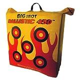 BIGshot Archery Ballistic 450 X Bag Target, 24 x 24 x 12''/42 lb., Yellow