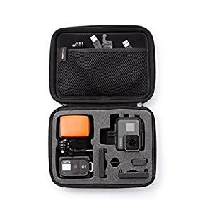 Amazon Basics Small Carrying Case for GoPro And Accessories – 9 x 7 x 2.5 Inches, Black