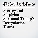 Secrecy and Suspicion Surround Trump's Deregulation Teams | Danielle Ivory,Robert Faturechi