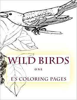 Amazon 1 WILD BIRDS One 9781518862465 Es Coloring Pages Books
