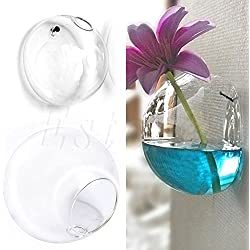 Amrka Glass Flower Planter Vase Ball Decor Wall Hang Terrarium Home Garden Container