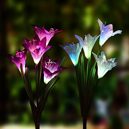 Outdoor Solar Garden Stake Lights - 2 Pack Solarmart Solar Powered Lights with 8 Lily Flower, Multi-color Changing LED Solar Stake Lights for Garden, Patio, Backyard (Purple and White)