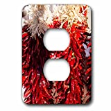 3dRose LSP_279247_6 USA, New Mexico, Sant, Red Chili Peppers on String. Santa Fe Plug Outlet Cover,