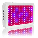 TOPL LED Grow Lights, 1000W Full Spectrum Double Chips LED Plant Grow Lamp for Hydroponic Indoor Medicinal Plants Growing Flowering