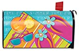 Briarwood Lane Pool Party Summer Large Mailbox Cover Oversized