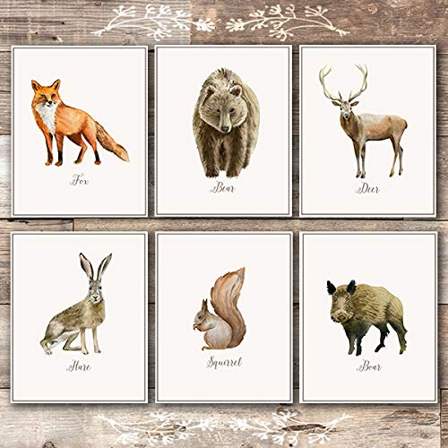 Vintage Woodland Animals Art Prints (Set of 6) - Unframed - 8x10s Animal Art Vintage Animal