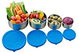 planet box freezer - Stainless Steel Food Storage Containers by Home & Harvest | Set of 4 with Leak-Proof Silicone Lids