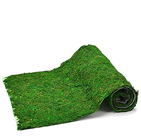 Byher Natural Green 18u0026quot; X 48u0026quot; Moss Mat Table Runner , Long  Lasting Preserved