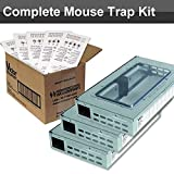 Aps Mouse Traps Review and Comparison