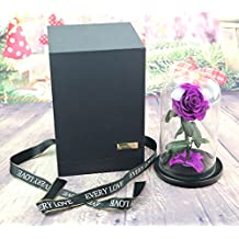 sexyrobot Beauty And The Beast Rose, Handmade Preserved Fresh Flower Real Rose with Fallen Petals in a Glass, with Exquisite Gift Box (Purple)