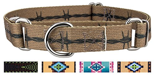 Country Brook Design | Barbed Wire Martingale Dog Collar Limited Edition - Medium