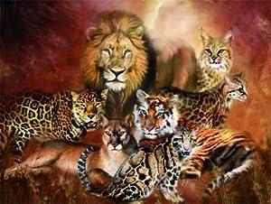 Big Cats Lion Tiger Cougar Lynx Leopard Cheetah 3d