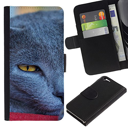 EuroCase - Apple Iphone 6 4.7 - Siberian blue British shorthair korat - Cuir PU Coverture Shell Armure Coque Coq Cas Etui Housse Case Cover