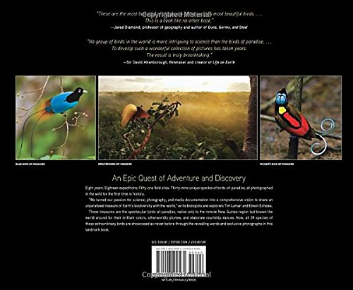 Birds of Paradise: Revealing the Worlds Most Extraordinary Birds: Amazon.es: Tim Laman, Edwin Scholes: Libros en idiomas extranjeros