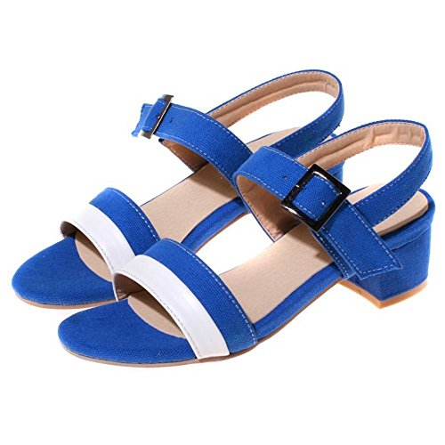 COOLCEPT Zapatos Mujer Moda Comodo Mary Jane Mid Chunky Heel Sandalias for Vestir Trabajo Oficina Azul