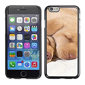 TopCaseStore / la caja del caucho duro de la cubierta de protección de la piel - Labrador Retriever Lab Puppy Sleeping - Apple iPhone 6 Plus 5.5