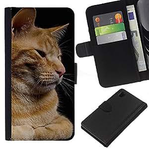 EJOY---La carpeta del tirón la caja de cuero de alta calidad de la PU Caso protector / Sony Xperia Z1 L39 / --Gato Naranja Curl Americano de Pelo Corto Casa