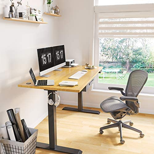 Electric Stand up Desk Frame Review