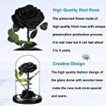 Preserved-Rose-Black-Roses-Handmade-Preserved-Flower-Real-Rose-in-Glass-Dome-Preserved-Roses-Never-Withered-Romantic-Gifts-for-Female-Valentines-Day-Mothers-Day-Birthday-9-inch-Black