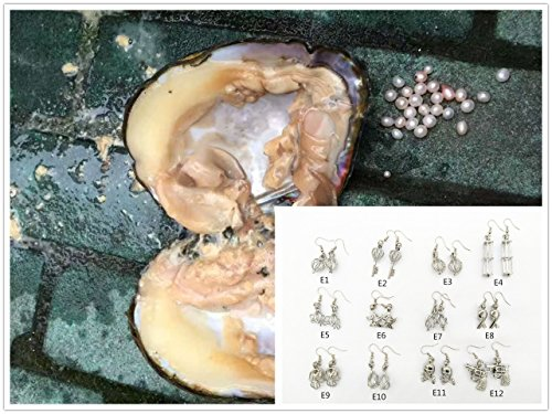 Big Large Monster Freshwater Pearl Oysters With Pearls + Cage (Large Oyster)