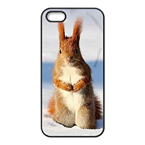 ALICASE Diy Customized Hard Case Squirrel for iPhone 5,5S [Pattern-1]