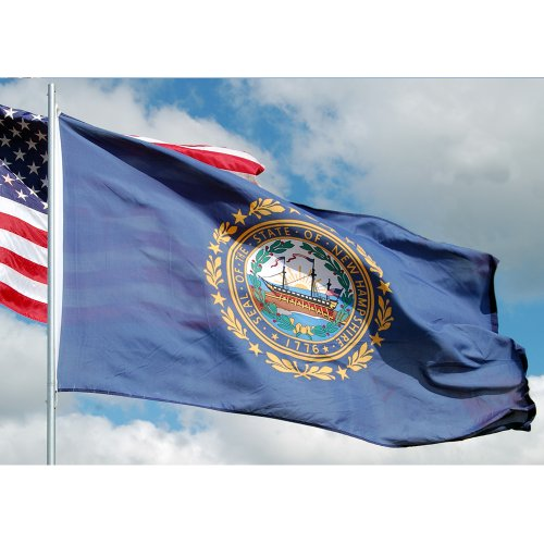 Allied Flag - 4' x 6' Outdoor Nylon New Hampshire State Flag - Made in USA - Vivid Color and Fade Resistant - Reinforced Hem and Brass Grommets