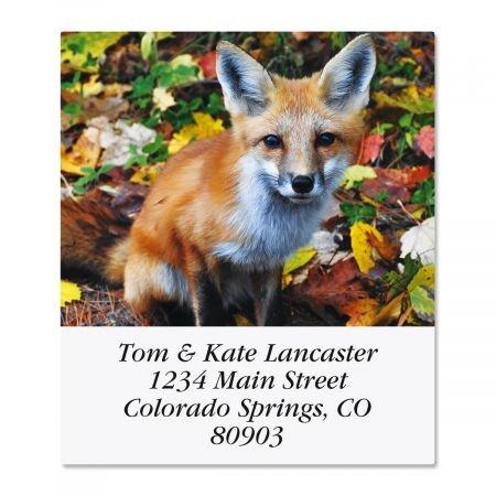 (Woodland Animals Square Address Labels (6 Designs) - Set of 144 1-1/2 x 1-3/4 Self-Adhesive, Flat-Sheet)