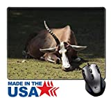 """MSD Natural Rubber Mouse Pad/Mat with Stitched Edges 9.8"""" x 7.9"""" Colorful bock IMAGE 22101833"""