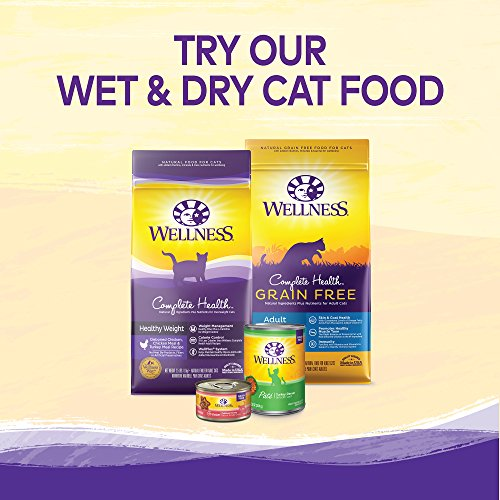 Wellness Kittles Crunchy Natural Grain Free Cat Treats, Tuna & Cranberries, 2-Ounce Bag