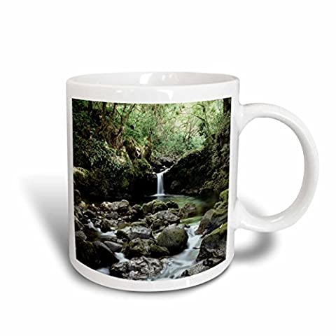 Danita Delimont - Hawaii - Hawaii, Maui, A waterfall flows into Blue Pool from the rainforest. - 11oz Mug - Flow Blue Plate