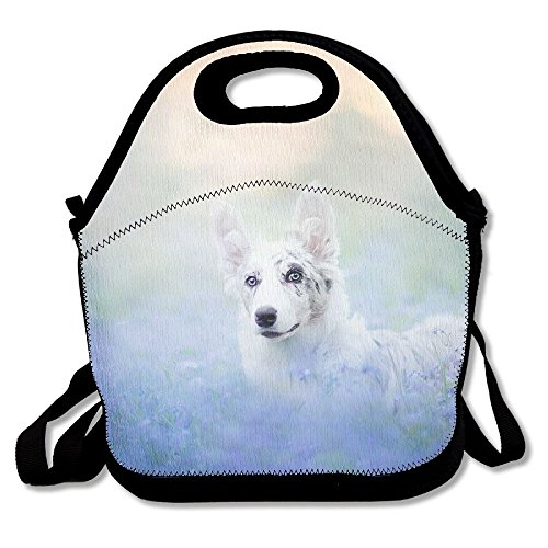 Lunch Tote Bag Bento Lunch Bag, Thermos Fresh Lunch Bags For Women Cute Dog Lavender