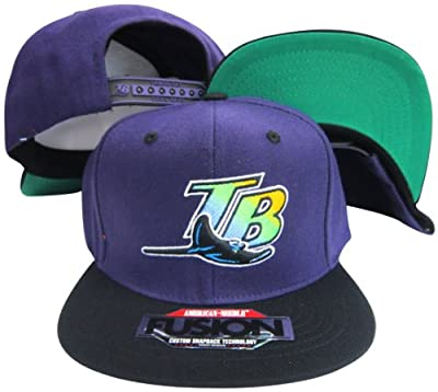 Tampa Bay Devil Rays Purple/Black Two Tone Fusion Snap Adjustable Snapback Hat / Cap