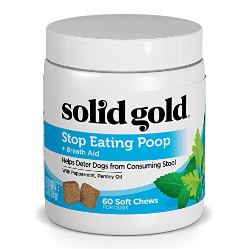 Solid Gold Stop Eating Poop for Dogs with Coprophagia; Natural, Grain-Free Supplement Chews with Peppermint, 60 Ct (How To Make Dogs)