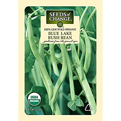Seeds of Change Certified Organic Bean, Blue Lake Bush - 17.6 grams, 50 Seeds Pack