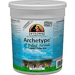 Wysong Archetype Pollock Raw Formula Canine/Feline Diet Dog/Cat Food - 7.5 Ounce Canister