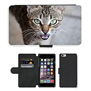 """GoGoMobile Flip PU Leather Wallet Case with Credit Card Slots // M00119342 Cat Expensive Greek Cat Greece // Apple iPhone 6 4.7"""""""