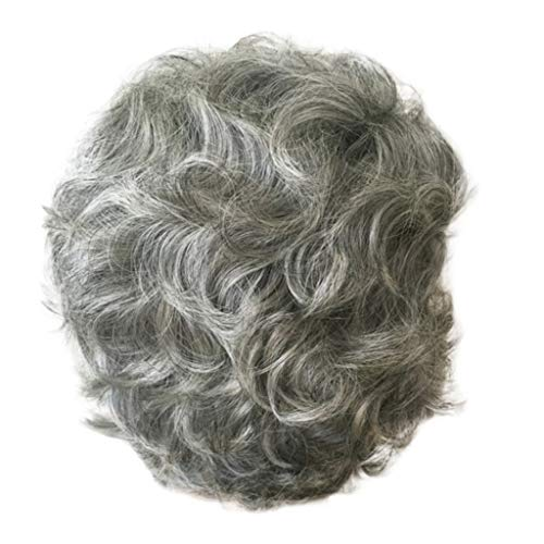 Sunyastor Ombre Short Human Hair Wigs Ladies Gray Short Curly Synthetic Full Hair Wigs Natural Wavy Fluffy Mom Costume Old Grandma Cosplay Wigs for Women ()