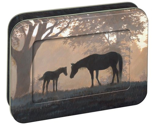 Tree-Free Greetings Mare and Foal, 12 Count EcoFriendly Note-card Assortment in a Collectible Photo Frame Tin (95724) ()