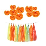 BOSHENG Crafts Pom Poms, Tissue Paper Flowers for Weddings, Birthday Parties, Bridal Showers, Baby Showers and Other Special Occasions