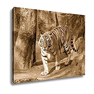 Ashley Canvas Siberian Tiger Panthera Tigris Altaica, Kitchen Bedroom Living Room Art, Sepia 24x30, AG5339206