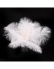 12 sztuk naturalne strusie pióro, DIY pióro pióro 10-12 cali (25-30 cm) dla majsterkowiczów łapaczy snów rękodzieła ślub przyjęcie ozdoby ścienne do domu biały