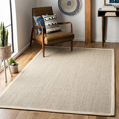 Jute Border Rug (Safavieh Natural Fiber Collection NF143C Marble and Beige Sisal Area Rug (6' x 9'))