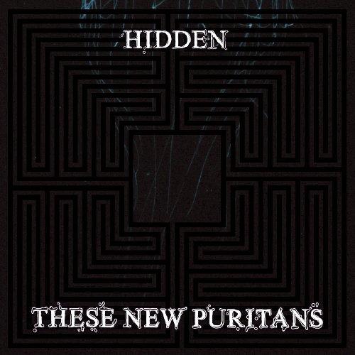 Hidden [Vinyl] - Japan Puritan