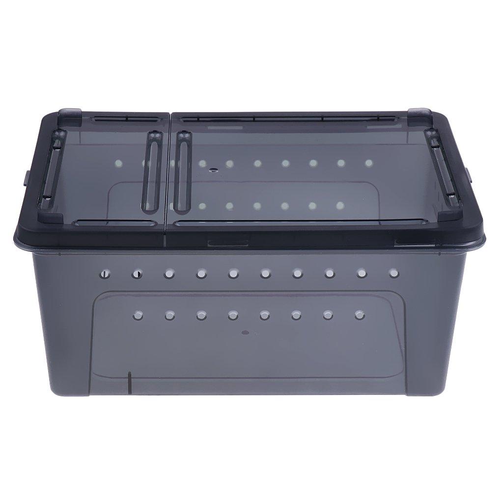 Sharplace Boîte à Reproduction pour Reptile Vivarium Terrarium pour Tortue Lézard-H4